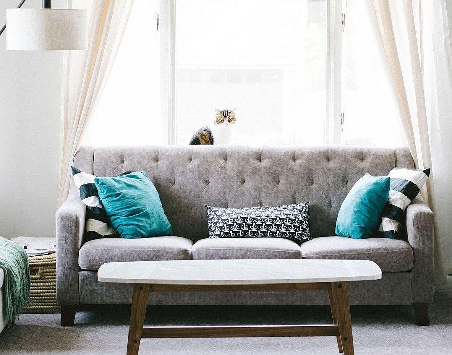 tvätta soffa